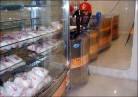 فروش مرغ بالاتر از ۱۰ هزارتومان گرانفروشی است